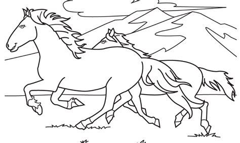 imagenes para colorear un caballo dibujos de caballos para colorear y pintar