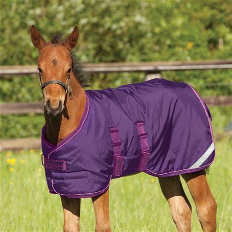 Outdoor Rugs For Horses Amigo Foal Rug Outdoor Equestrian Accessories Ebay