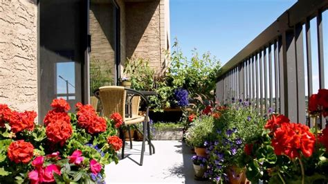 beautiful balcony gardens dig this design beautiful balcony garden design ideas cityscape gardening
