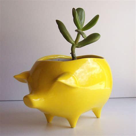 ceramic pig planter vintage design in lemon yellow succulent