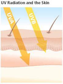 Do Uv Ls Cause Cancer by Uva Uvb Skincancer Org