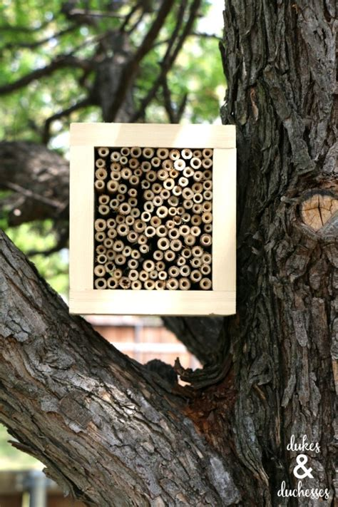 buy bee house diy bee house dukes and duchesses