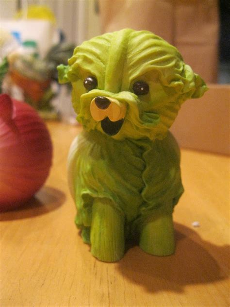 is cabbage for dogs cabbage by elainethegoddess on deviantart