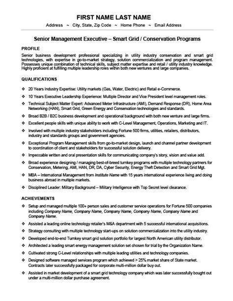 senior manager resume template vice president or senior manager resume template premium