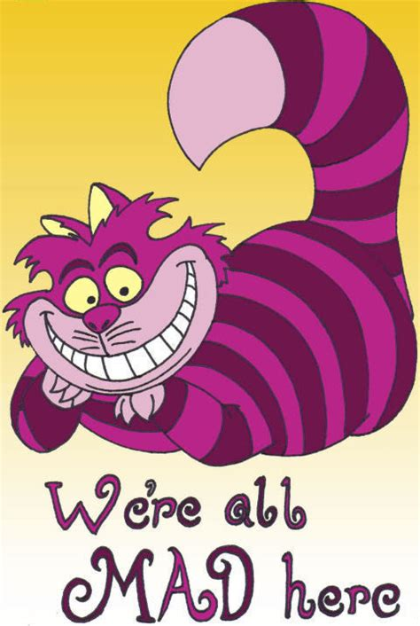 X2 Ceshire Cat cheshire cat we re all mad here ade s road cycling