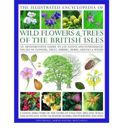 plants of the world an illustrated encyclopedia of vascular plants books illustrated encyclopedia of flowers and trees of the
