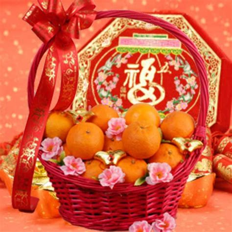 new year gift oranges oranges gifts delivery new year mandarin