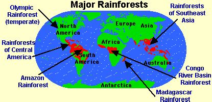 rainforest map kberlick maps lesson