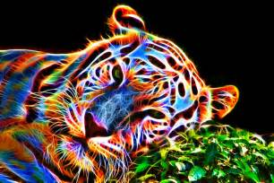 colorful tiger iii by megaossa on deviantart