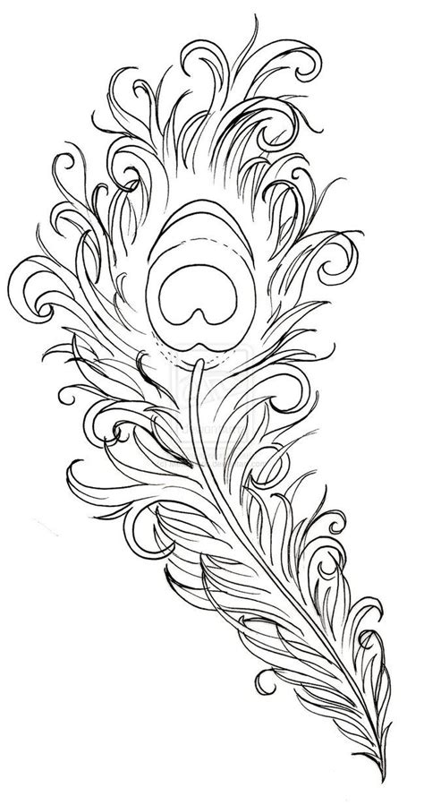 peacock feather tattoos designs peacock feather drawing peacock feather by