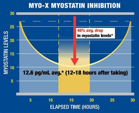 myo x supplement mhp myo x 300 g mr supplement amerika legjobb