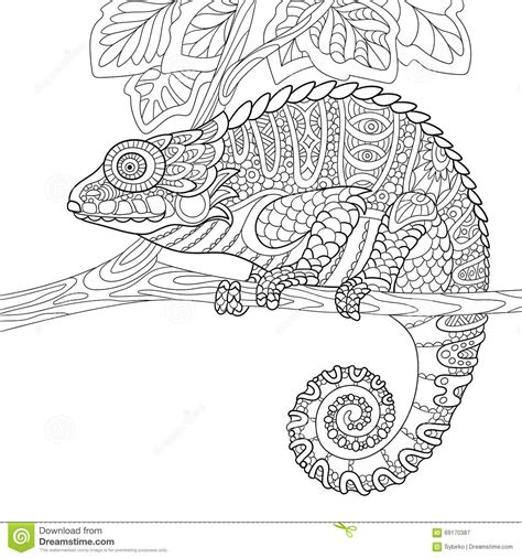 coloring pages for adults chameleon zentangle stylized chameleon stock vector illustration