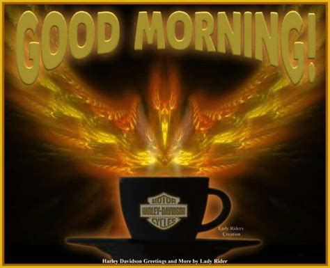 Harley Davidson Morning by 365 Best Nights Mornings Images On Mornings