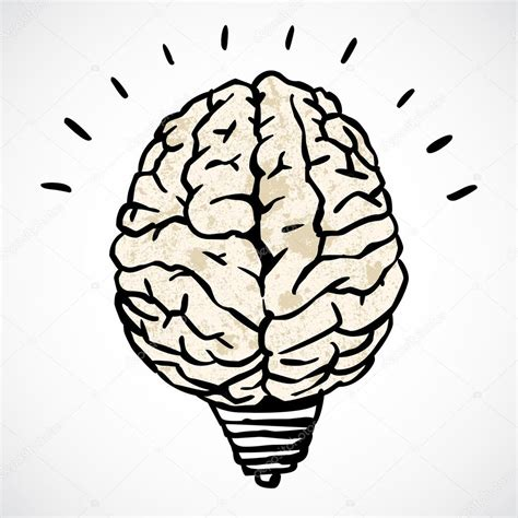 doodle brain brain and l concept in doodle style stock vector