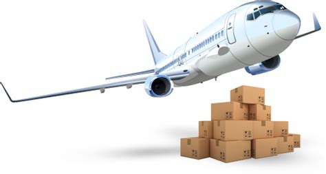 air freight worldwide cargo container services mcs