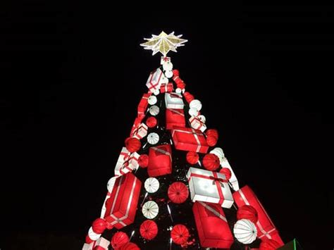 christmas tree images philippines interesting trees from around the world