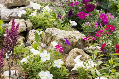 rock garden design ideas guide pro tips install it direct