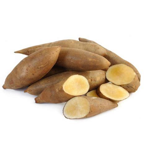 Teh Yacon yacon vegetable growth properties and its uses veggies