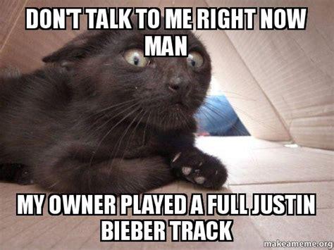 Don T Talk To Me Meme - schitzo cat meme
