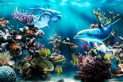 imagenes para fondo de pantalla delfines fondo pantalla delfines bajo mar