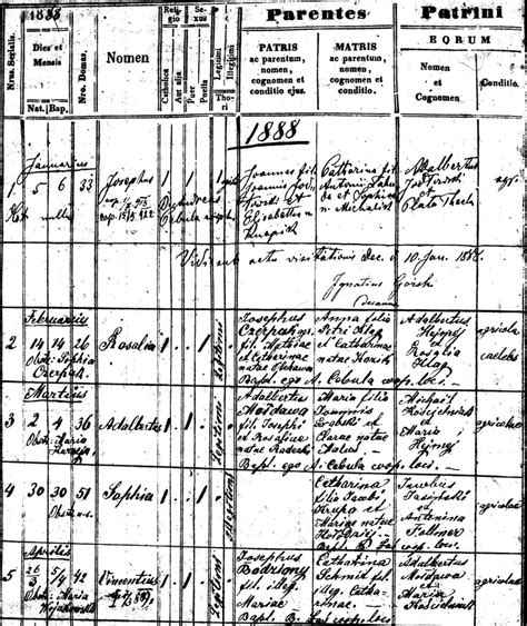 Hamburg Birth Records Bodziony Family Documents The Spiraling Chains Kowalski Bellan Family Trees