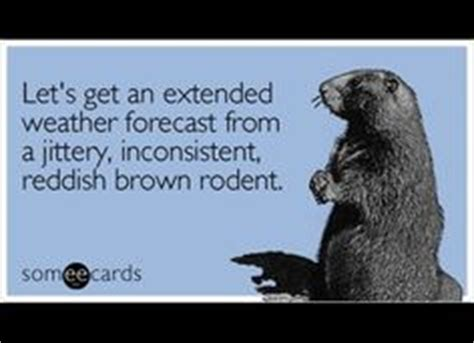groundhog day quotes prognosticator ground hog day on hold marketing on hold marketing
