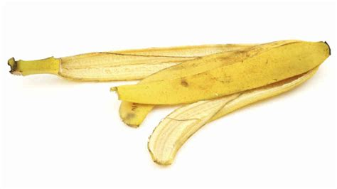 Banana Peel researchers found that the oft maligned banana peel