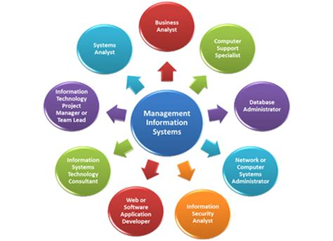 Mba Information Systems Newyork by Essays On Management Information System Excel Homework