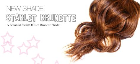 brown clip in hair extensions cashmere hair new shade of cashmere hair now available cashmere hair