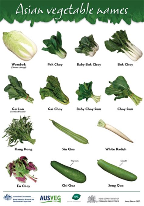 Kulkas Sharp Stripe vegetable names in with images