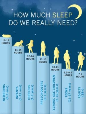 how much sleep do need toddler sleep recommendations
