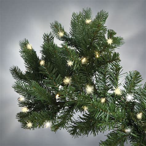 the world s best prelit douglas fir 8 5 full led