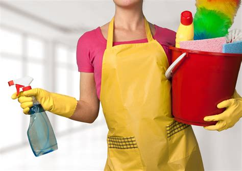 spring cleaners pain free spring cleaning