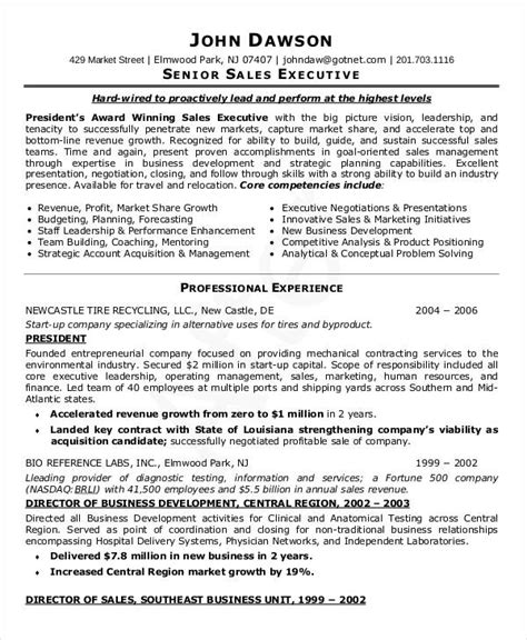 Cfo Resumes Sles by Ceo Resume Template Senior Executive 28 Images Best