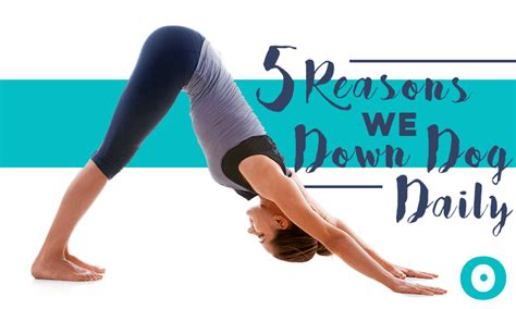 downward benefits get your daily dose of downward beyogi