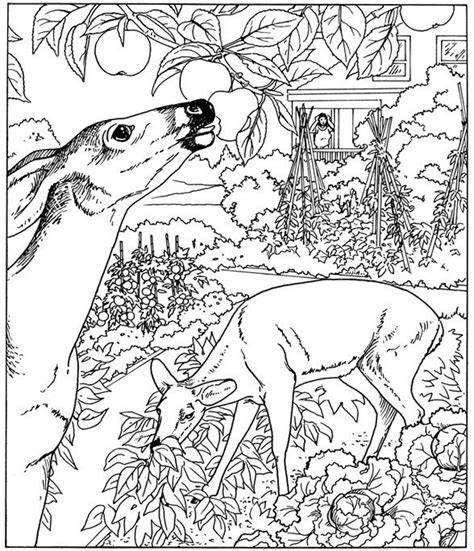 hard nature coloring pages advanced coloring pages hard and difficult to color
