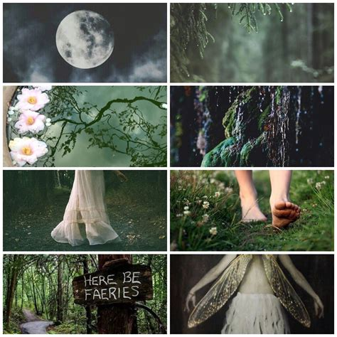 fairy mood board forest fairy forest fay fairy