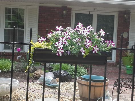 Planters For Wrought Iron Railings by Gutter Gardens