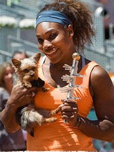 Serena Williams Pooch On The Mound by 1000 Images About Tennis On Tennis Dress