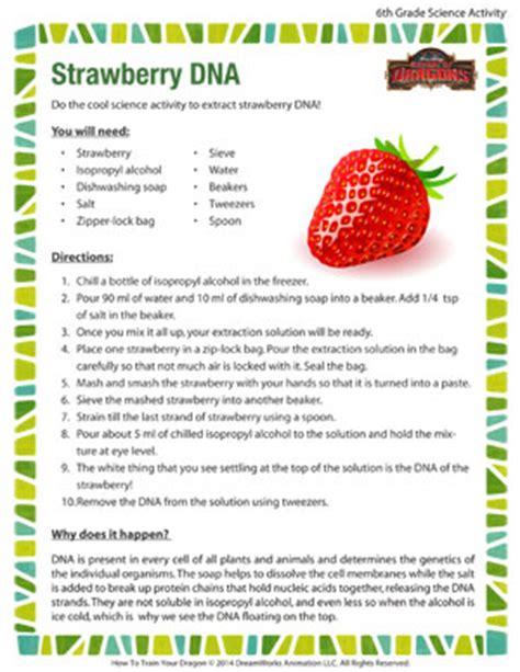 strawberry dna east boston science enrichment program