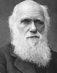 Alfred Russel Wallace Biografi bio of alfred russel wallace alfred russel wallace evolution theory