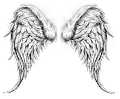 realistic wing tattoo realistic wings drawing pictures of