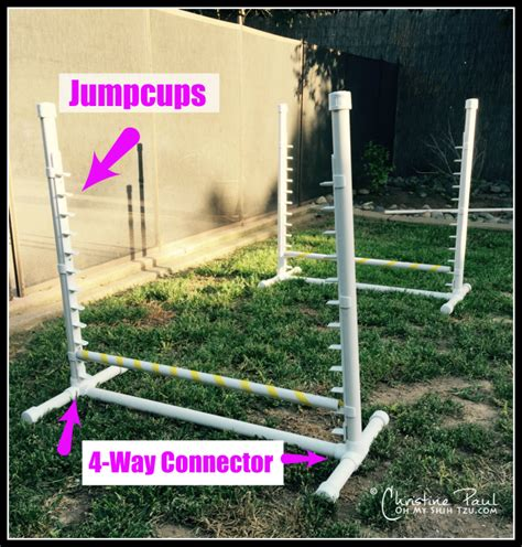 puppy agility equipment image gallery agility jumps