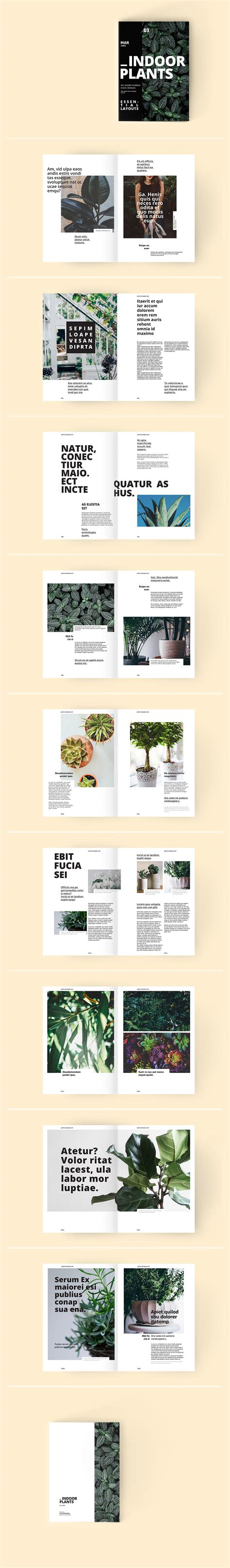 indoor plants a magazine template on behance