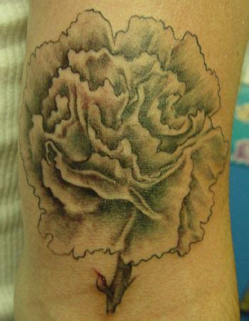 january birth flower tattoo 20 best images about carnation tattoos on