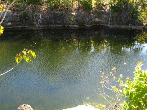 Key Largo Botanical Garden Dagny Johnson Key Largo Hammock Botanical State Park 031