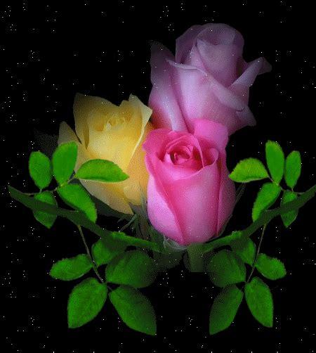 imagenes de rosas brillantes con movimiento gifs animes fleurs