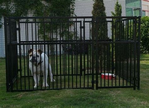 dog runner for backyard 16 best images about backyard dog run ideas on pinterest