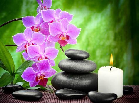 imagenes flores zen wallpaper 3840x2160 zen wallpapersafari