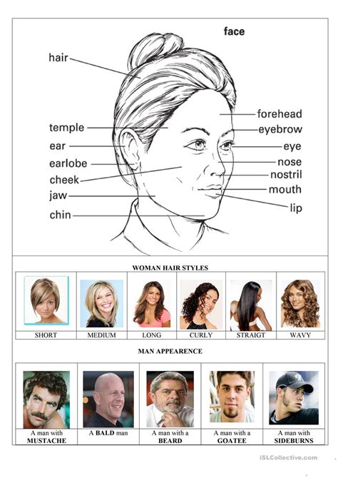 appearances and hairstyles esl the face parts and woman hairstyles worksheet free esl